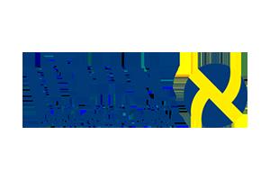 אייקון לוגו חברת איילון